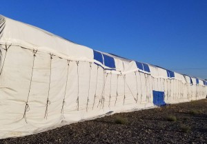 fully tarped